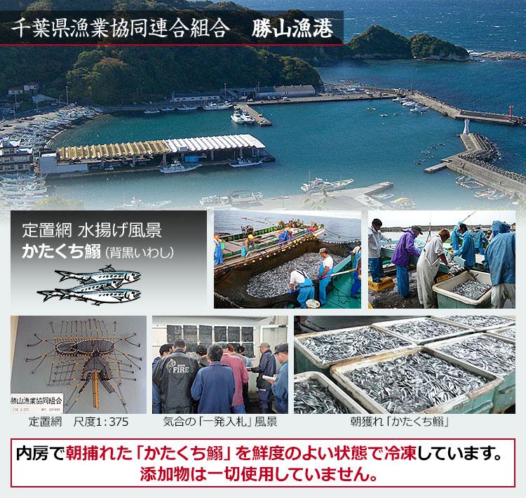 千葉県漁業協同連合組合 勝山漁港